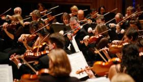 De Symfonische Organisatie